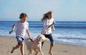 Dog Friendly Vacation Rentals